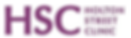 Holton Street Clininc logo
