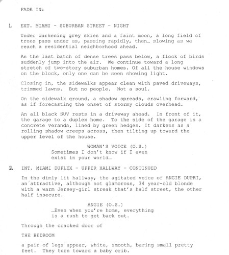 Sample Script Page - Vanished_edited.jpg