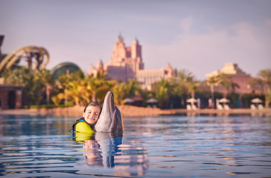 marine_and_waterpark_dolphin_bay_05_04_2016_987ext.jpg