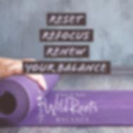 BalanceProgram.jpg
