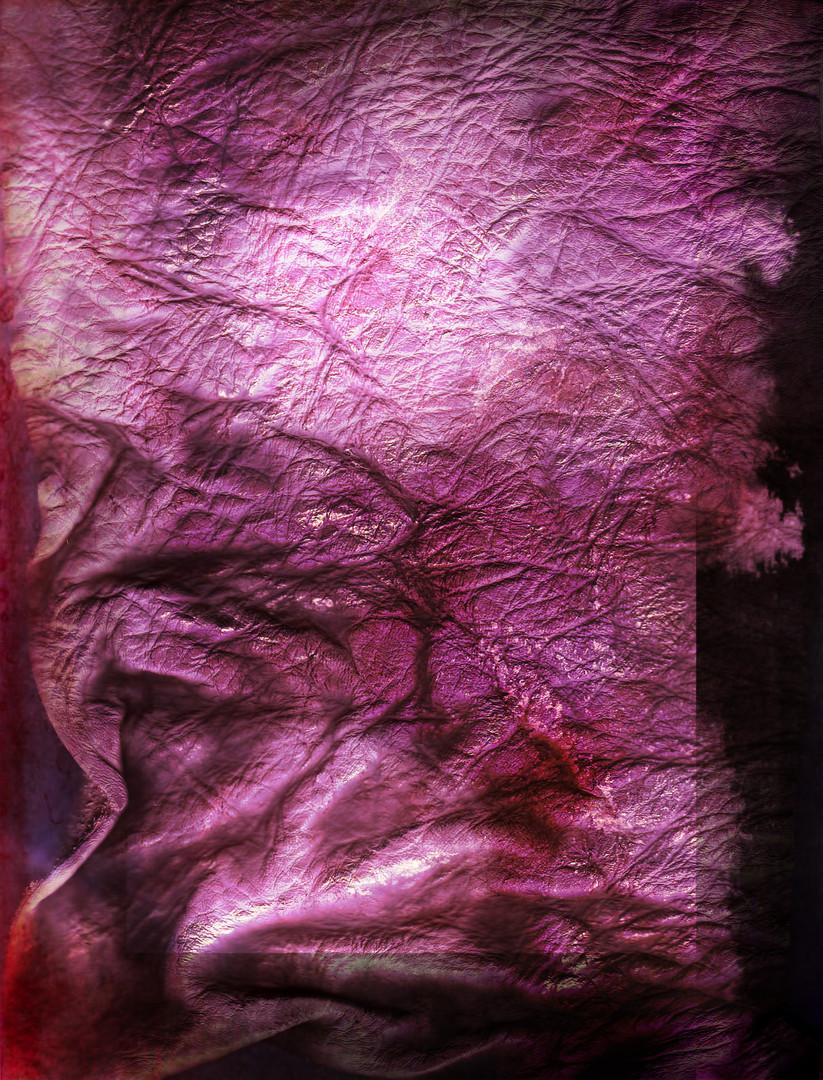 Ramona Shine Colourflv copy.jpg