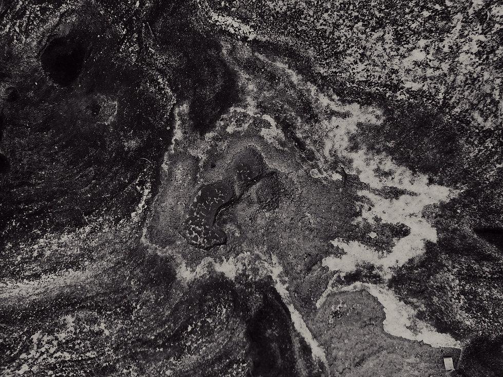 pexels-daria-shevtsova-1884303_edited_ed