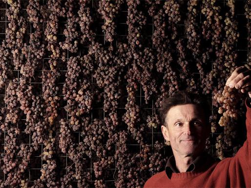 Maule, Pioneer of Natural Wines