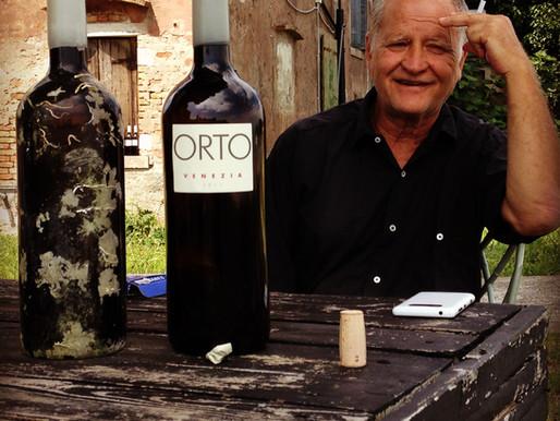 A Vineyard in Venice