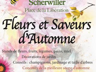 Dimanche 28 octobre : Fleurs et Saveurs d'Automne à Scherwiller