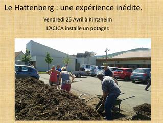 Le Hattenberg : une expérience inédite !