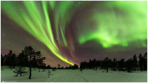 Aurora Borealis          50 x 75 cm op CANVAS