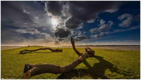 Dramatic Skies (7).jpg