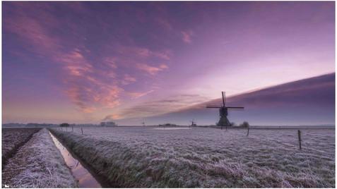 Local Atmospheres (5).jpg