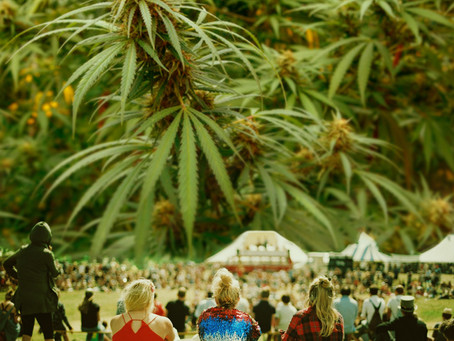 4 Healthy ways you can celebrate with Cannabis this 420!