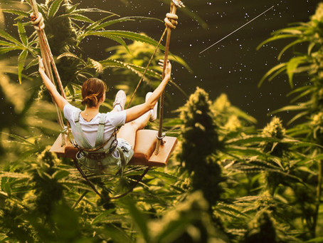 14 ways Cannabis can help improve Women's Health & Wellness