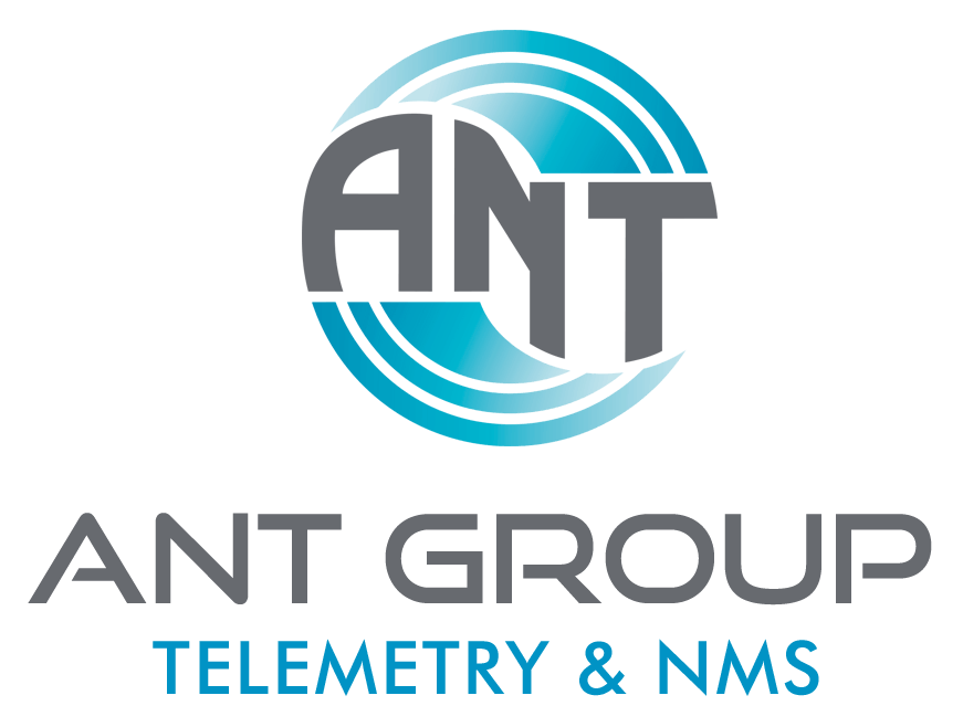 ANT Group Low