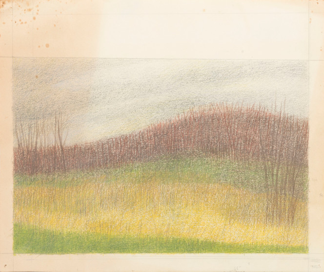 Untitled - landscape, bare trees, brown, yellow and green striped field