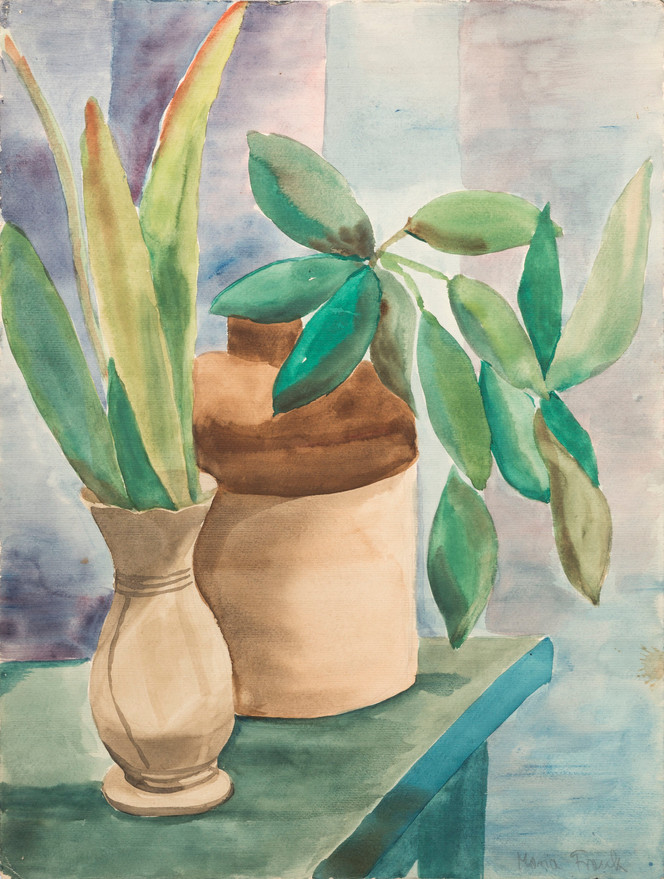 Untitled - two green plants in brown vases on green table