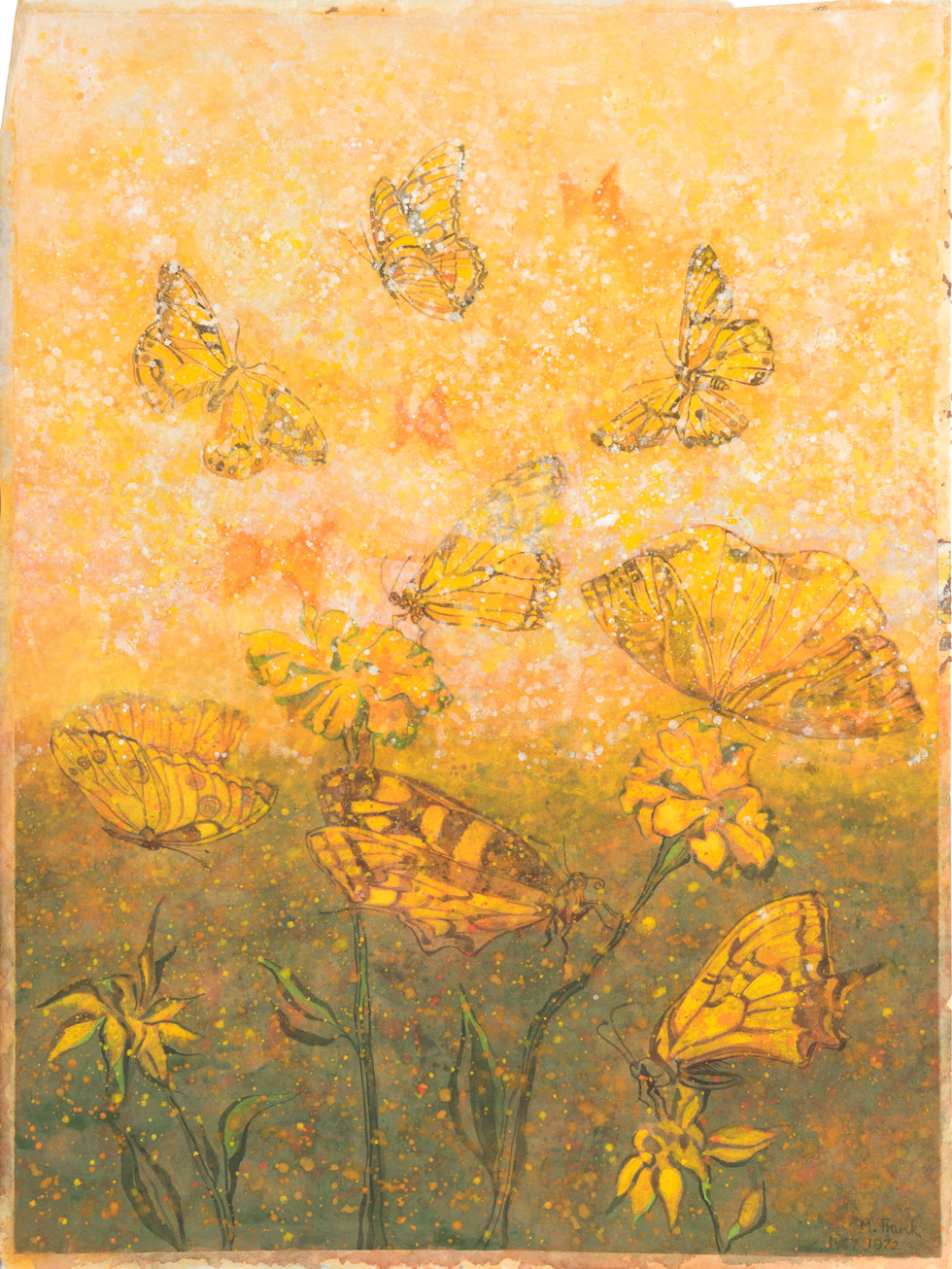 Untitled - orange butterflies and flowers