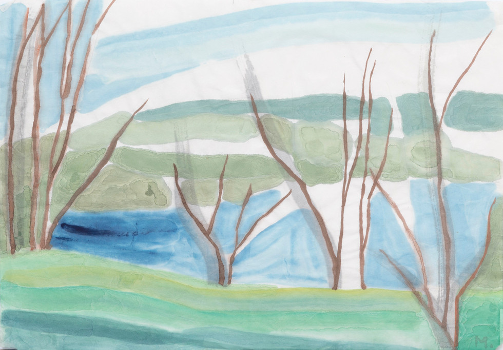 Untitled - skinny brown trees on river bank
