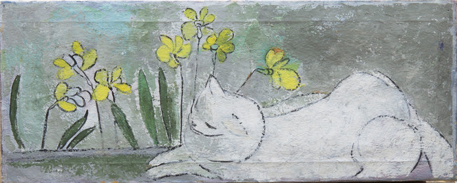 Untitled - white cat sleeping next to yellow flowers