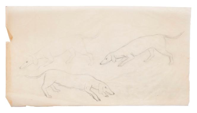 Untitled sketch - sketch for boy and dog illustration, studies of the dog (1)