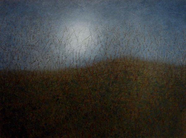 Moonlit Branches