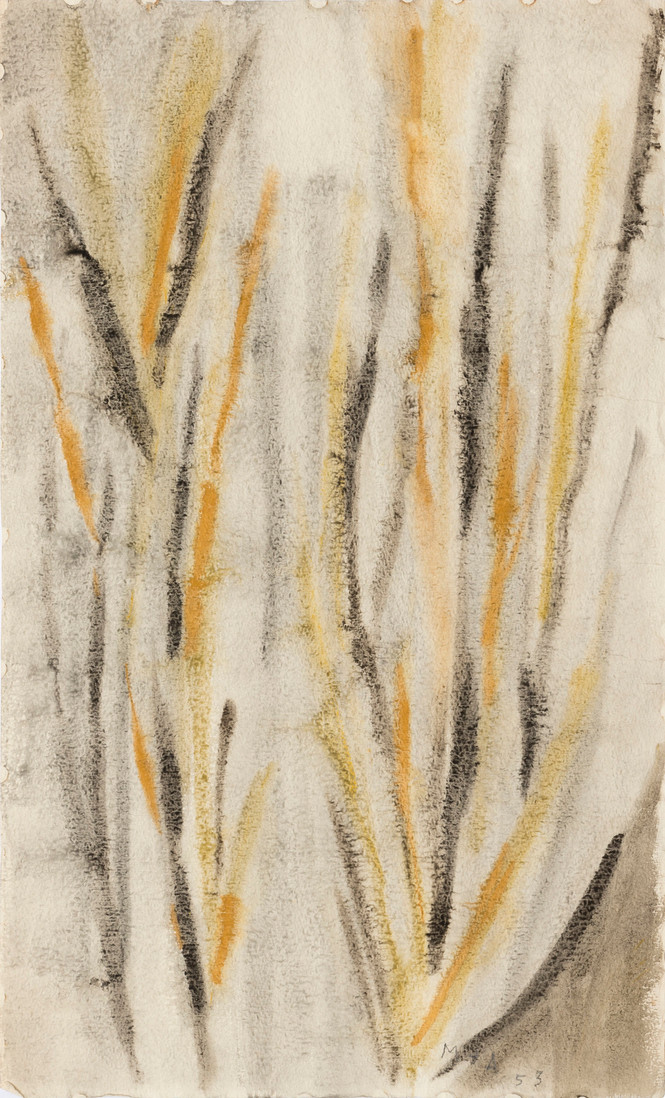 Untitled - abstract earthy color plants