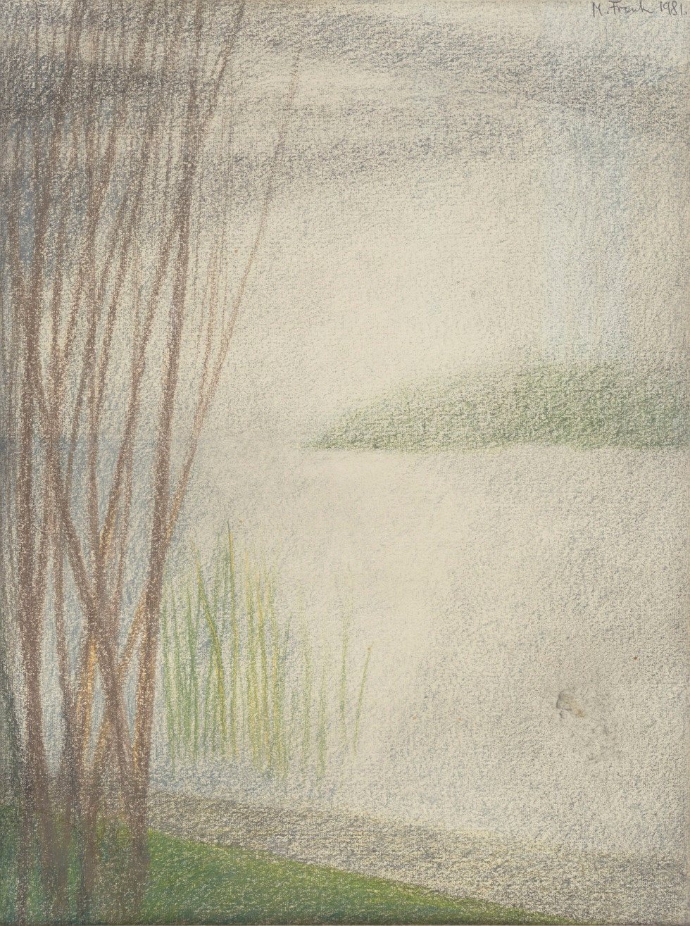 Untitled - grass in water and trees on shore