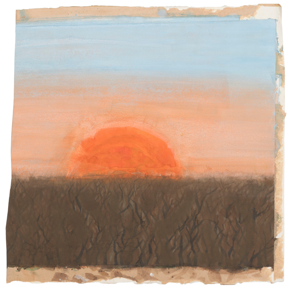 Untitled - sunset on brown field
