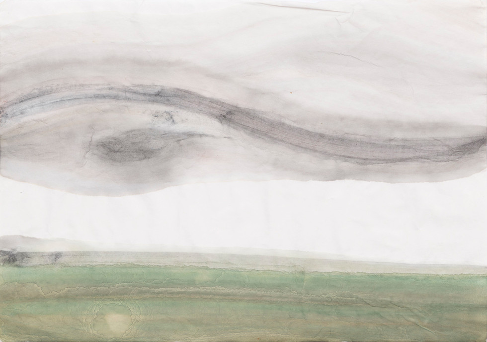 Untitled - green field and gray sky with yin yang shape