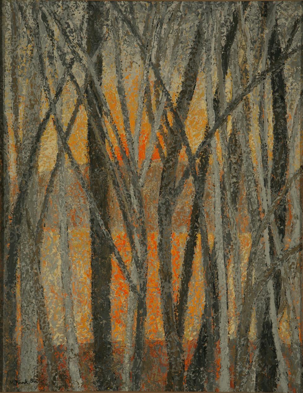 Orange Sunset (Winter Sky with Leafless Trees)