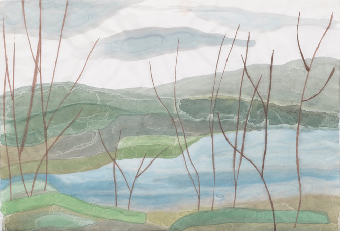 Untitled - skinny branches next to water and hills