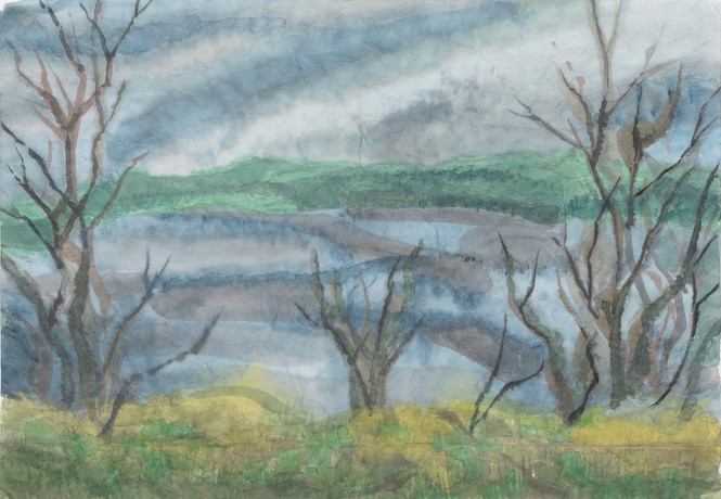 Untitled - bare trees on river bank