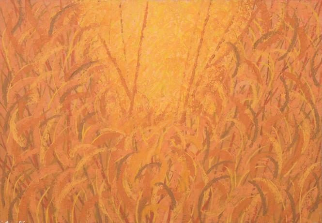 Untitled - golden field