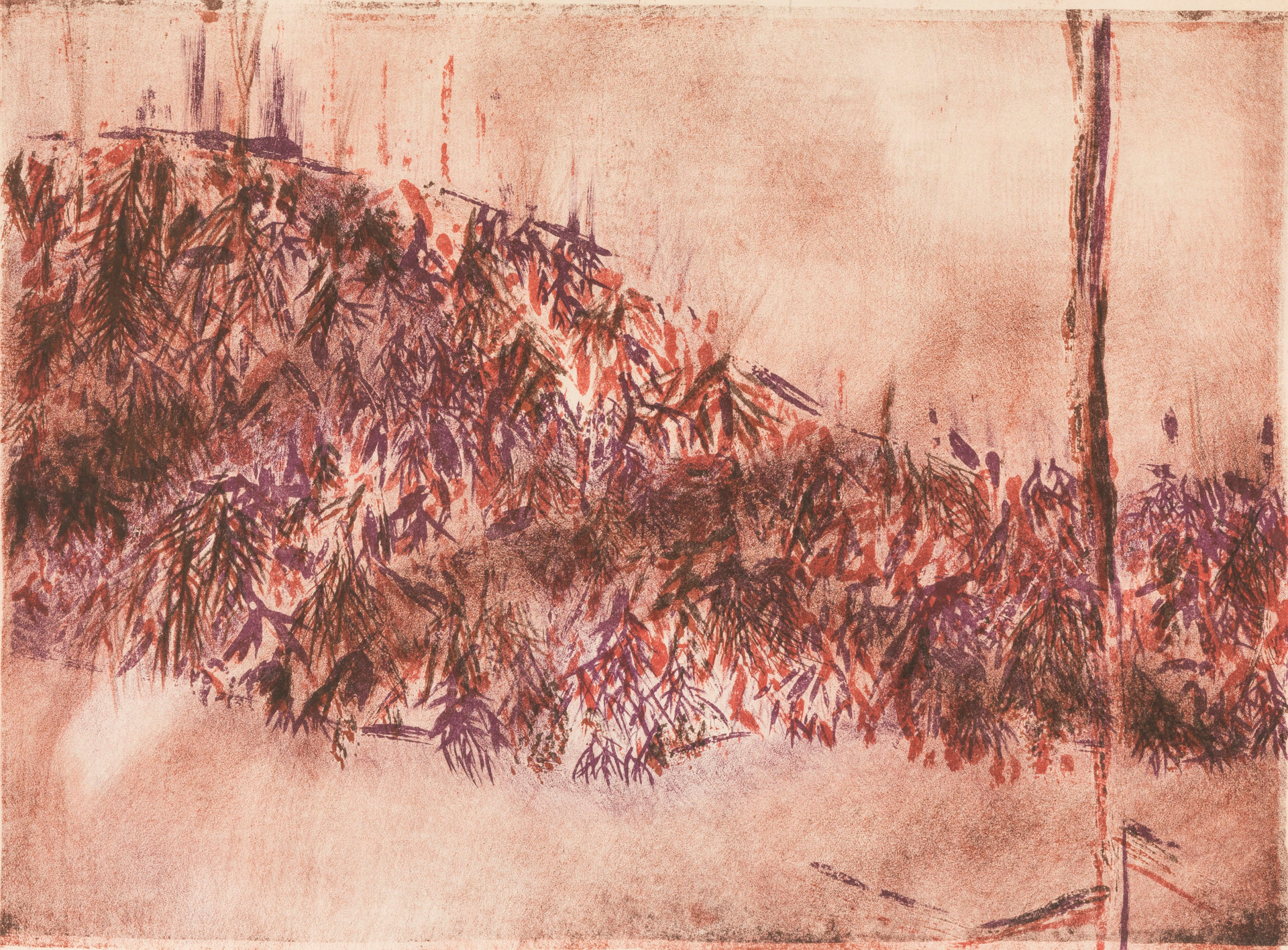 Untitled - red and purple foliage on hill