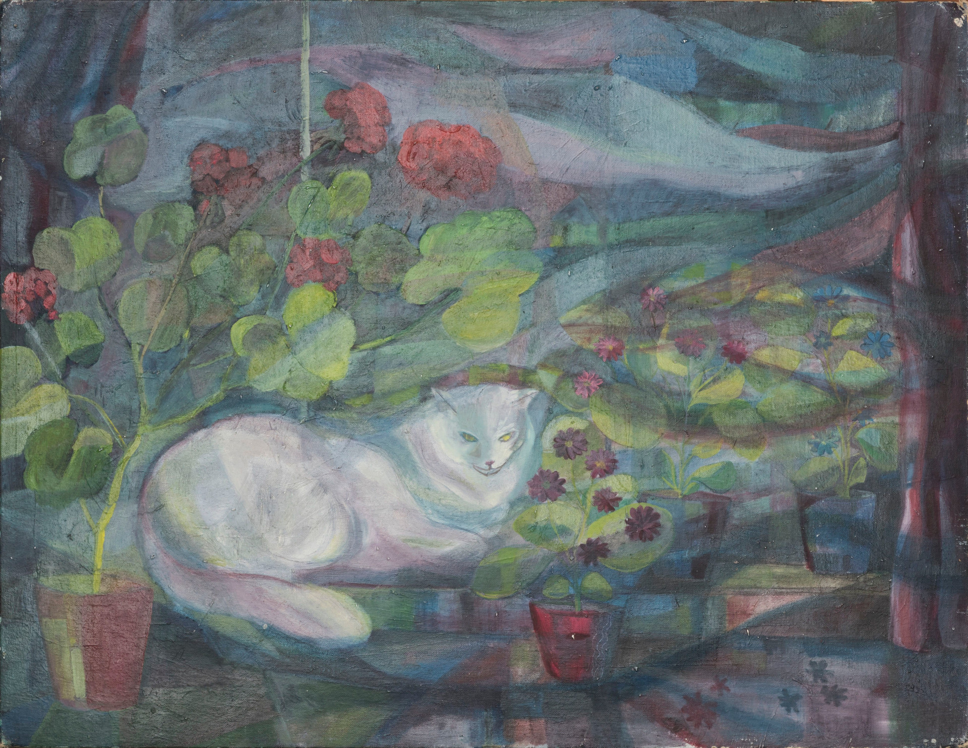 Untitled - white cat with red and purple flowers