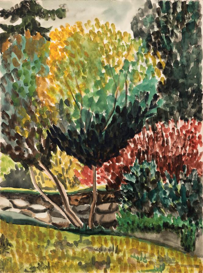 Untitled - trees