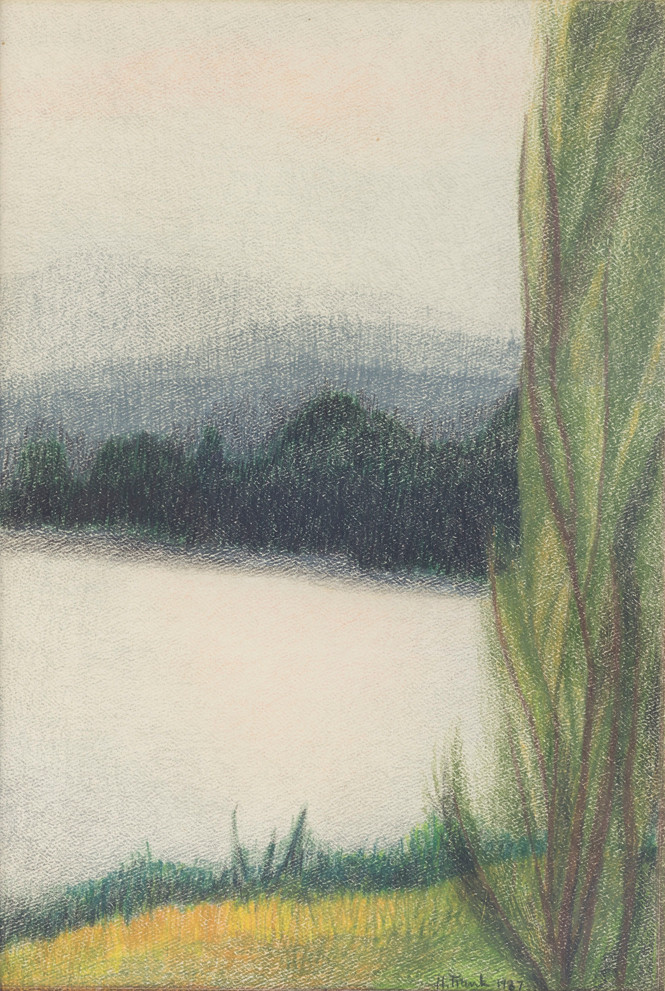 Untitled - hill next to water with tall tree on the right