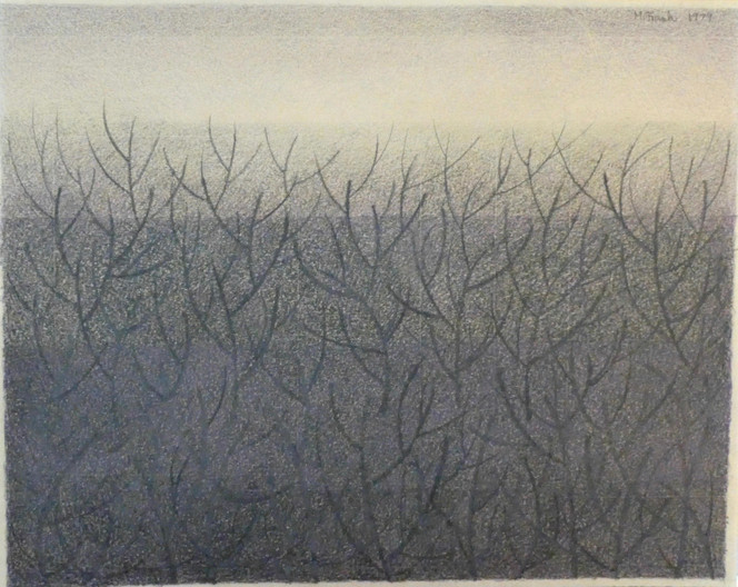 Thicket (2)