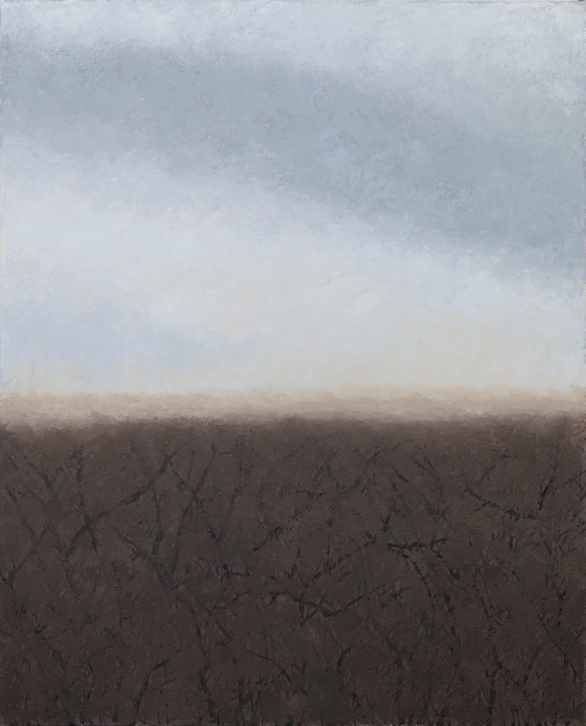 Untitled - gray sky and brown field (2)