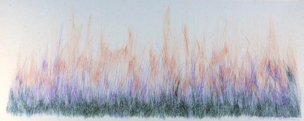 Weaving Grasses