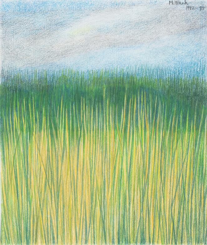 Summer Grasses (2)