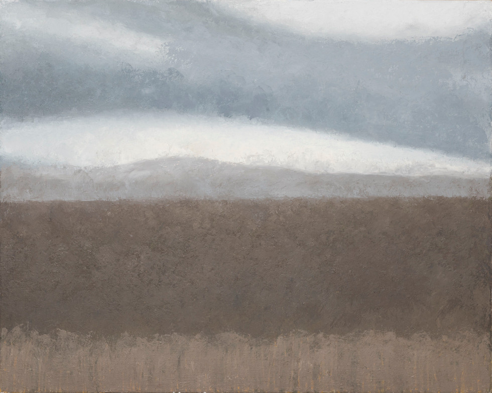 Untitled - gray sky and brown field
