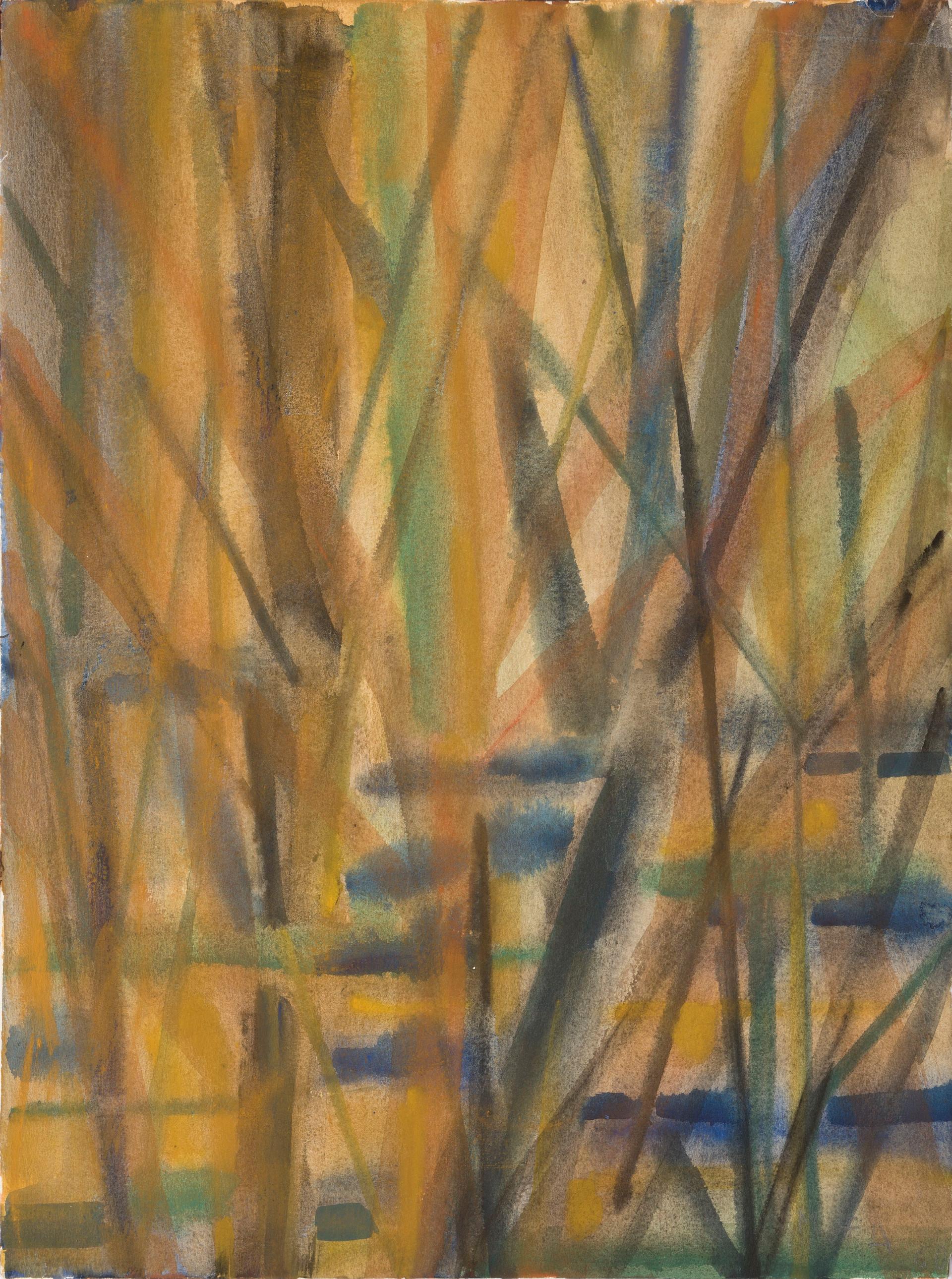 Untitled - autumn woods