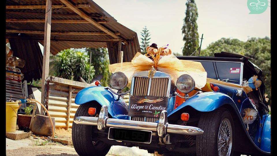 MG TD 2000 Vintage Car
