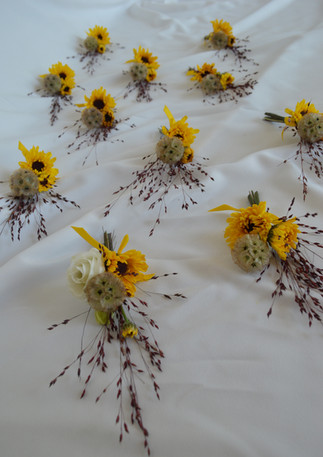 Sunflower Starflower Boutonnieres