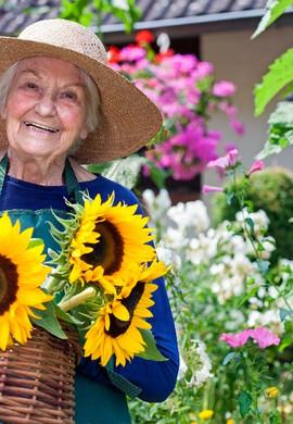 What's New? Helloo Elder Home Share Ambassadors 👋🏼