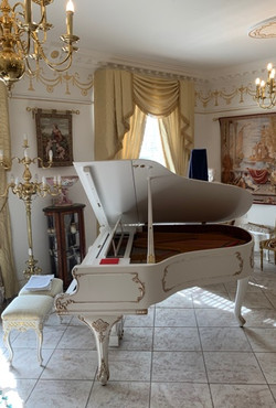 HOME SHARE PIANIST WANTED!
