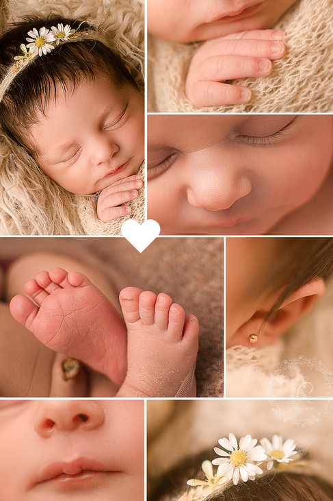 fotos de detalhes newborn