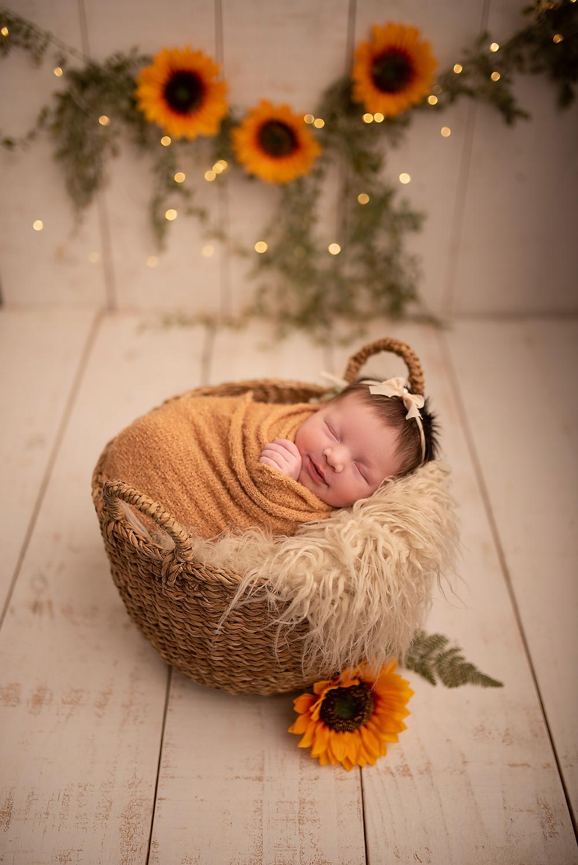 newborn de menina em curitiba