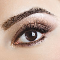 picture of eyebrow tint
