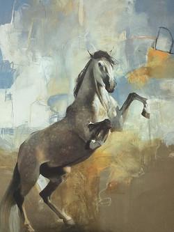Untitled 172202