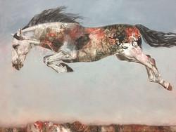 Dream Jumper (164147)